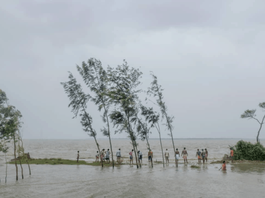Photo: Hopes of fish at high tide. Ghoramara, West Bengal, India. © Arko Datto