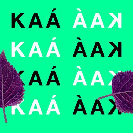 KAA_papel_de_parede3