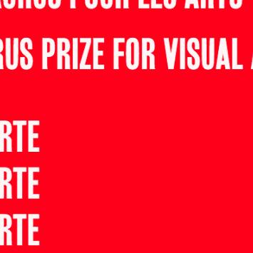 Arts Opportunities - VANSA